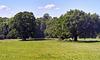 park-1072-1074 Panorama-05-06-17