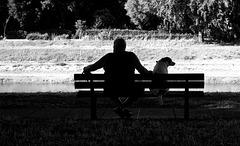 bench buddies