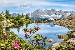 The Mirror Lake