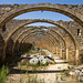 the abandoned oil mill of S. George's at Karydi