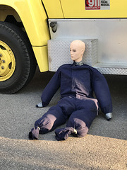 dummy at rest