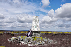 Outer Edge. Howden Moor   /   July 2014