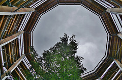 Baumwipfelpfad im Steigerwald, Blick aufwärts - Canopy walkway, view upwards