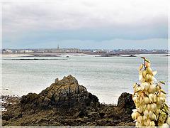 Vue vers Saint Malo (35) depuis le circuit de Randonnée