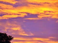 Heavenly Colour.