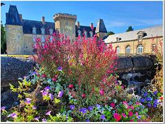 Château en robe fleurie