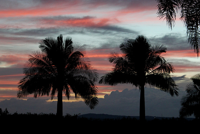 118/365 Vivid Sunrise