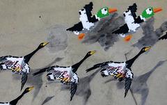 Graffitis migratoires....!