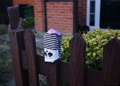 TLOP: panda sock