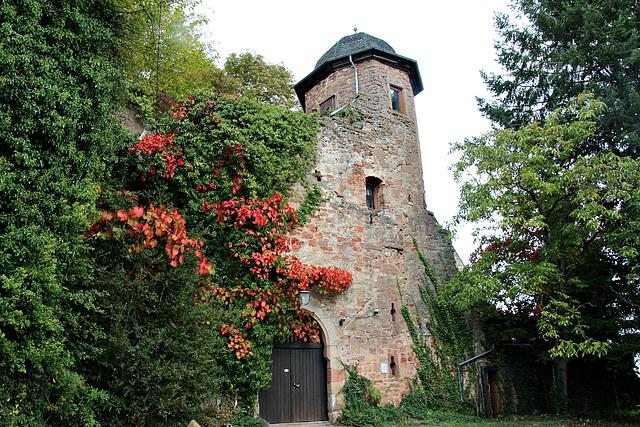 Kropsburg, Pfalz