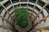 Baumwipfelpfad im Steigerwald, Blick 40 m in die Tiefe - Canopy walkway, view  40 meters straight down.