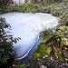20210221 9923CPw [D~LIP] Biotop, Eis, UWZ, Bad Salzuflen