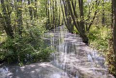 Flöttergraben
