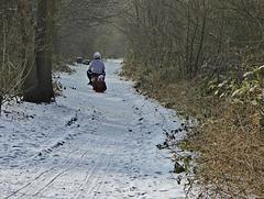 Winter sleigh ride for H.A.N.W.E.
