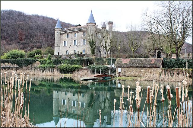 Villemoirieu (38) 24 février 2015. Château de Bienassis.