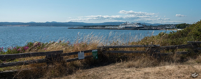 A Day Walking in Victoria, Part 5--HFF and MORE!!! :D (+11 insets)