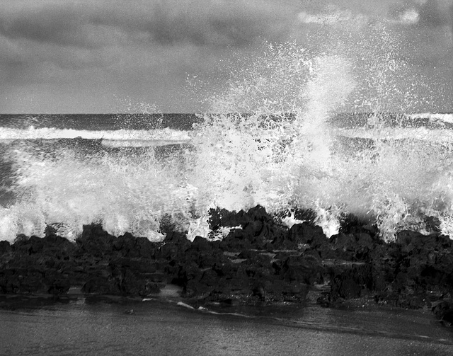 Coral Cove Splash 3