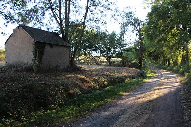petit chemin au bord de l'Indre