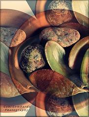Stones & Leaves