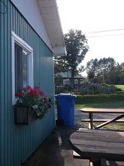 Blue picnic / Fleurs & recyclage