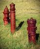 Lots of hydrants
