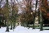 Allein im Park - Alone in the park