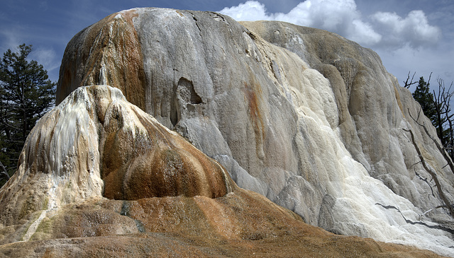 Outcrop at Mammoth Hot Springs