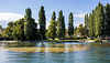 160806 algues St-Sulpice