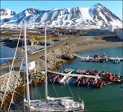 Ny-Ålesund (42)