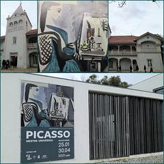 PICASSO - Universal Master Exhibition