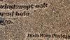 Poem (Fragment)