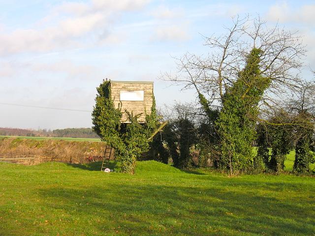 Former Tree House near Fisherwick Park Farm