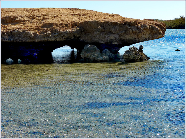 Sharm el Sheikh : Ras Mohammed - la barriera corallina emerge
