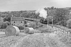 "GWR castle class no 5029 ""NUNNY CASTLE"" passes Abbots House Farm  on the North York Moors Railway"