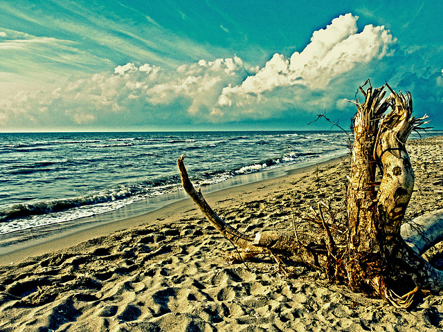 Spiaggia d'Ottobre 2