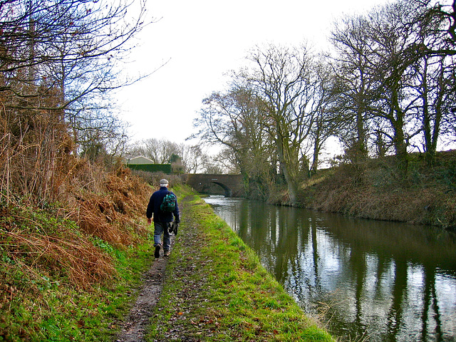 Looking towards Hademore House Bridge on the Coventry Canal