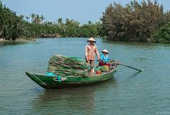 unterwegs auf dem Sông Thu Bồn bei Hội An - P.i.P. (© Buelipix)
