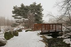 Bei der Alsterquelle: Im Winter