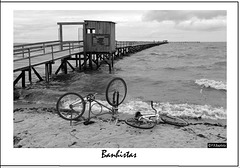 BANHISTAS