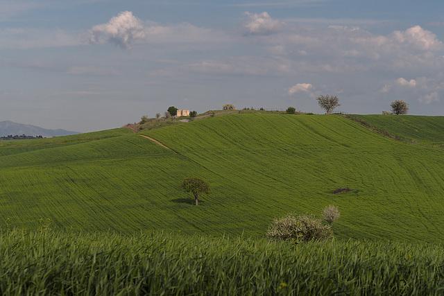 Greek pastoral