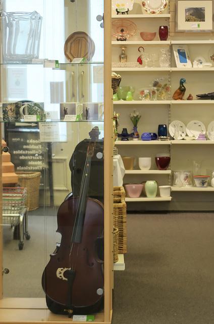 Charity shop 'cello