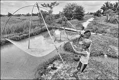 Scène de pêche en rizière - 2