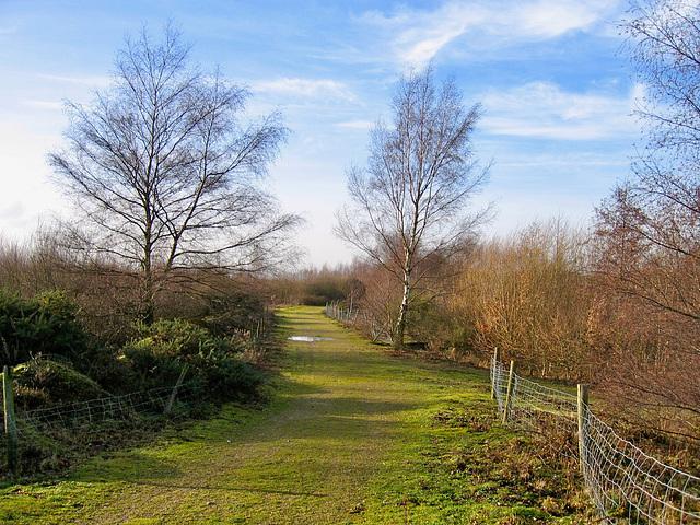 Footpath leading to Fisherwick Pools