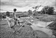 Scène de pêche en rizière