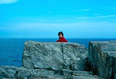 Windblown on granite, 1976