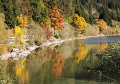 Herbst am Haldensee
