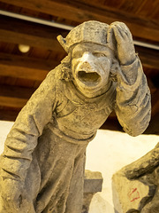 HOLY TERRORS - gargoyles and chimeras from Château de Blois
