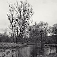 Derbyshire Wye - Crow's Nest by Sheepbridge