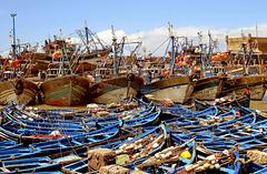 Le bleu d' Essaouira