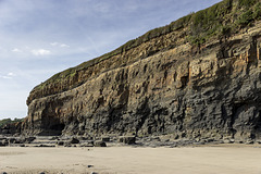 Cliff section east of Amroth 1